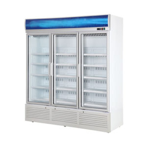 Movable Upright Cooler for Display